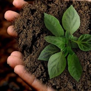 Neue Webinarreihe zu unternehmerischer Nachhaltigkeit