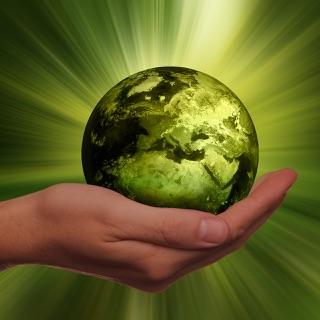 Wir zeigen Ihnen, wie Sie Ihre Webseite nachhaltiger gestalten können.
