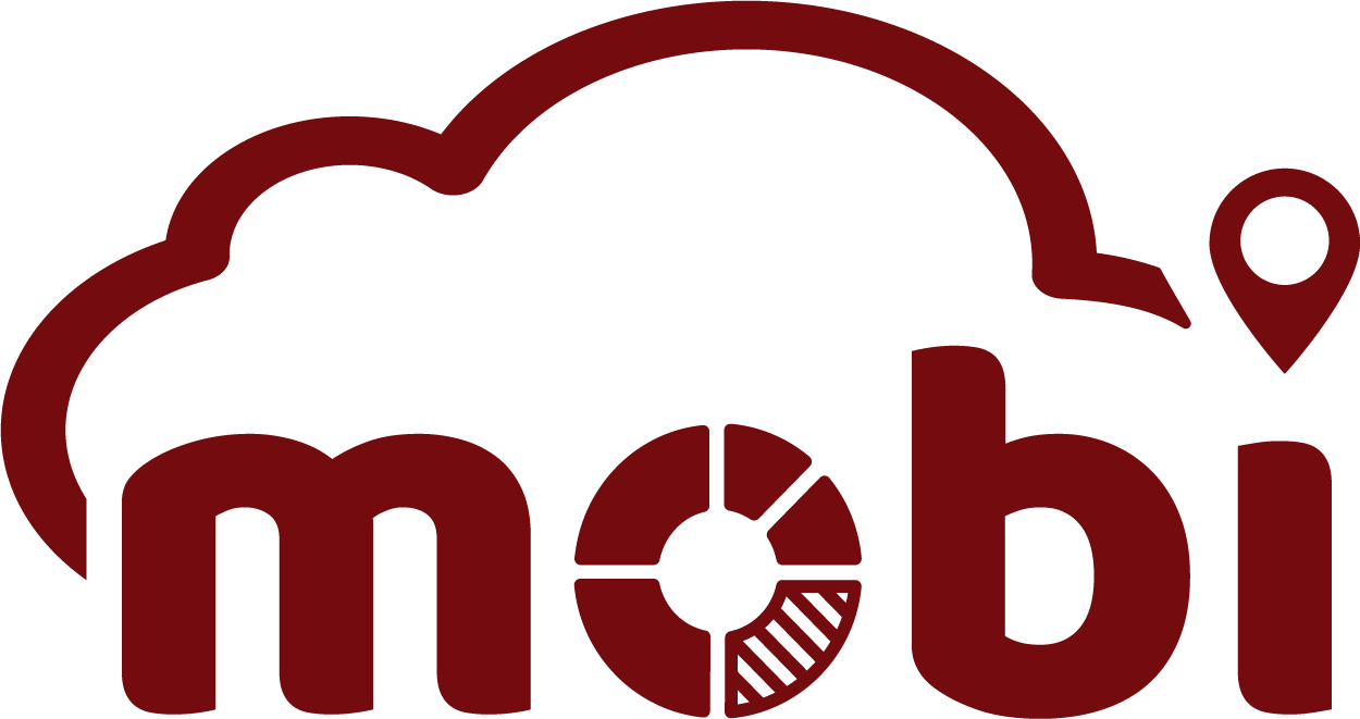 MOBI Mobility Business Intelligence GmbH